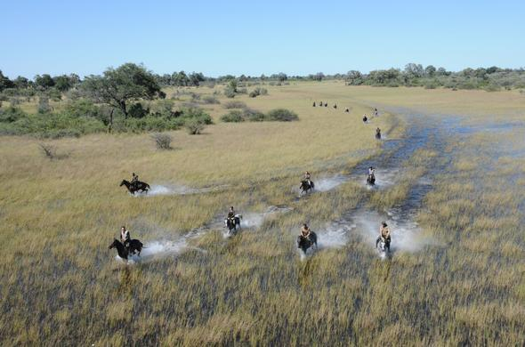 Horse-back safari across the Okavango flood-plains