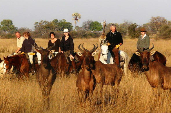 See Antelope on a Horseback safari.