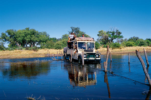 Okavango Self-drive Safari Guide