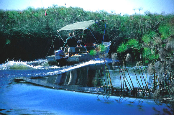 Transfer boat speeding thru the Okavango Delta