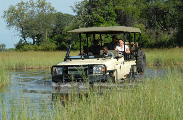 Off-road game drive in Botswana.