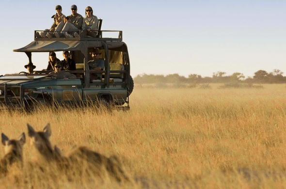 Exciting game drives in Botswana.