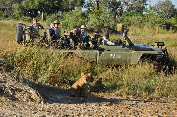 Botswana game drive in an open safari vehicle.
