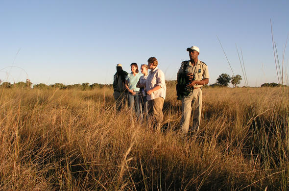 Bush walk at Camp Okavango