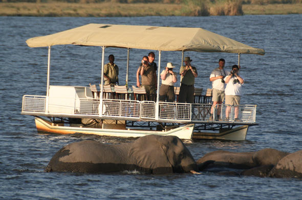 River safari on Chobe river from Chobe Game Lodge. Botswana