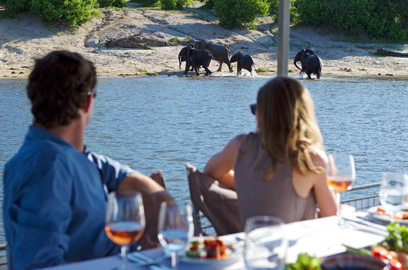 Enjoy lunch while taking a slow cruise down Chobe River.