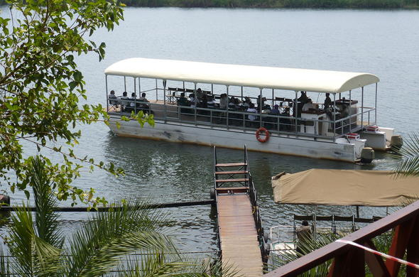 Cruise down the Chobe River to spot wildlife.