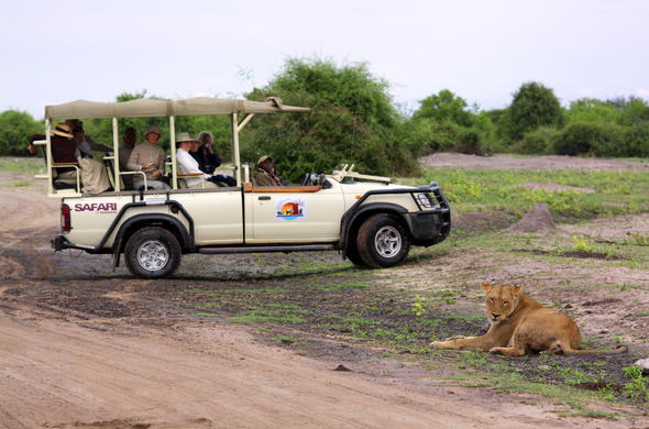 Game drives specialised safari vehicles.