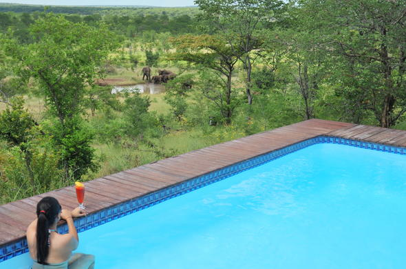 Relax poolside while watching passing African wildlife in Victoria Falls.