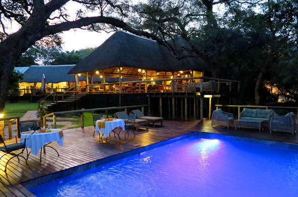 Enjoy pre-dinner drinks around the pool at Elephant Valley Lodge.