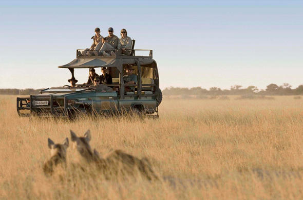 Game drive at San Camp