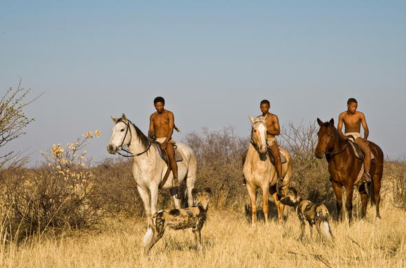 San bushmen on horseback.
