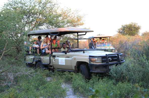 Game drive in the Kalahari can be rewarding.