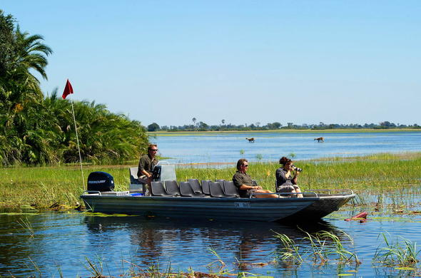 Motor boat safari navigating the Okavango Delta channels.