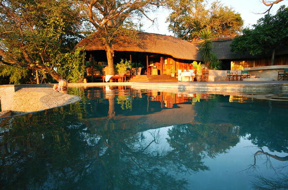 Go for a refreshing swim in the pool at Kaza Safari Lodge.