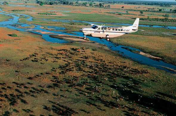 Flying into the Okavango