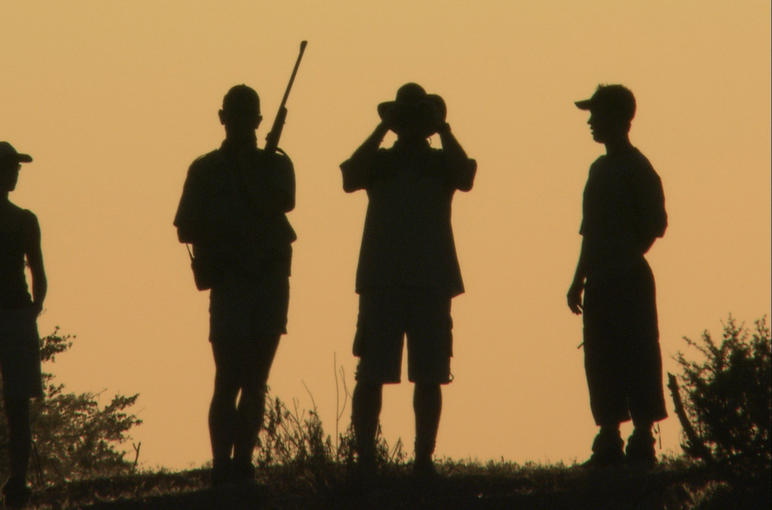 On a sunset-game walk at Mashatu Game Lodge. Tuli