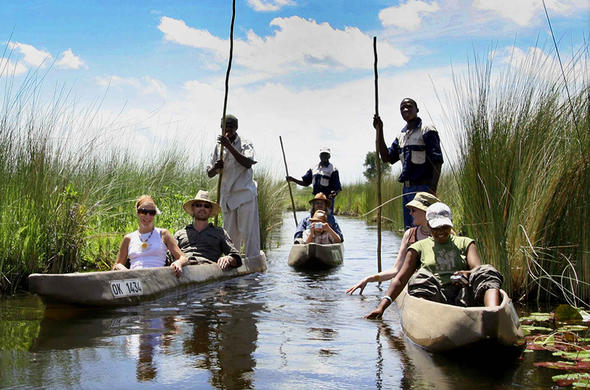 Poling thru the papyrus in Okavango