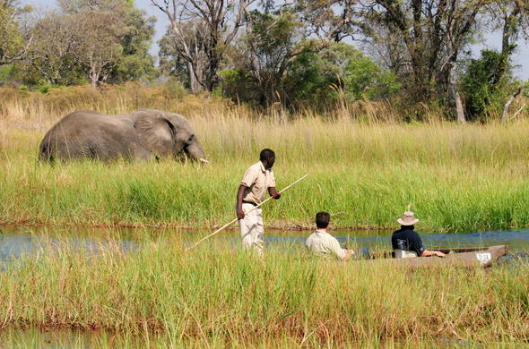 Traditional Okavango Delta mokoro dug-out canoe excursion.