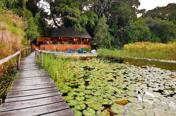 Secluded accommodation in the Okavango Delta.