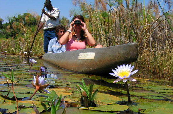 Mokoro safaris through the Okavango Panhandle.
