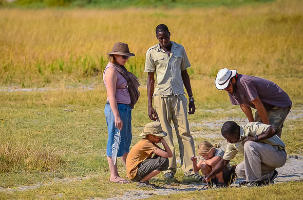 Family-friendly walking safaris.
