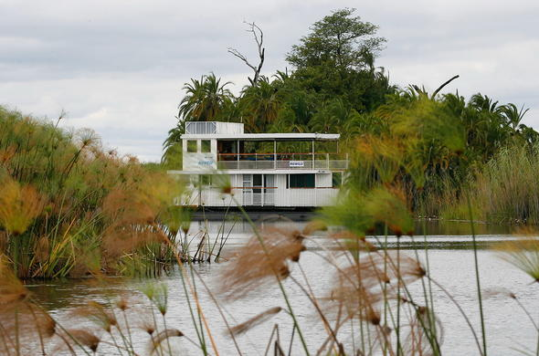 Cruising along the Okavango waterways in a houseboat.