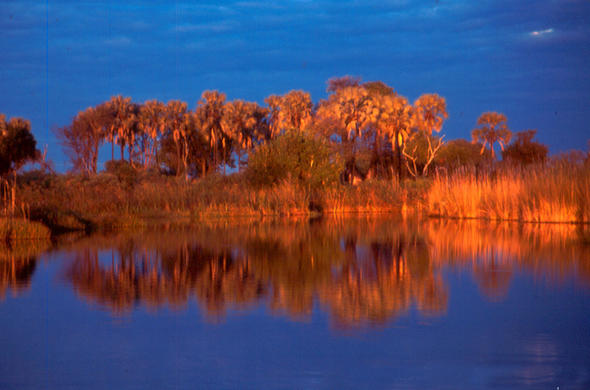 Okavango Sunset from Makoro at Kwara Tented Camp