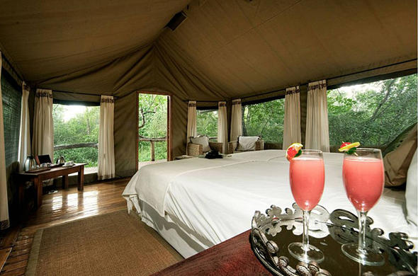 View from your Suite. Royal Tree Lodge
