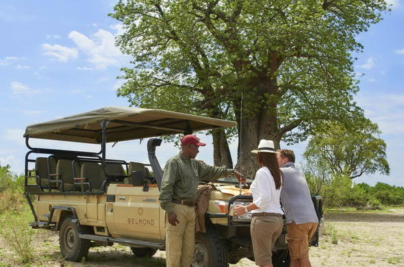 Open safari vehicle game drive with qualified guide.