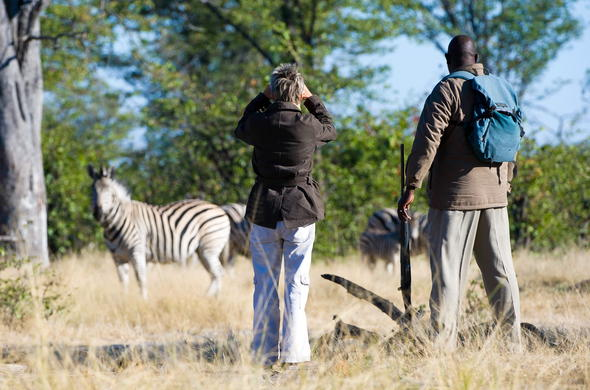 Walking safari providing many Botswana wildlife sightings.