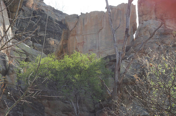 Tsodilo Hills rock art high on cliff face. Michael English