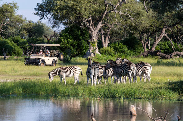 Game drives to see zebra and other wildlife.