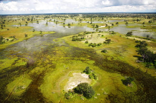 The exquisite Okavango Delta.